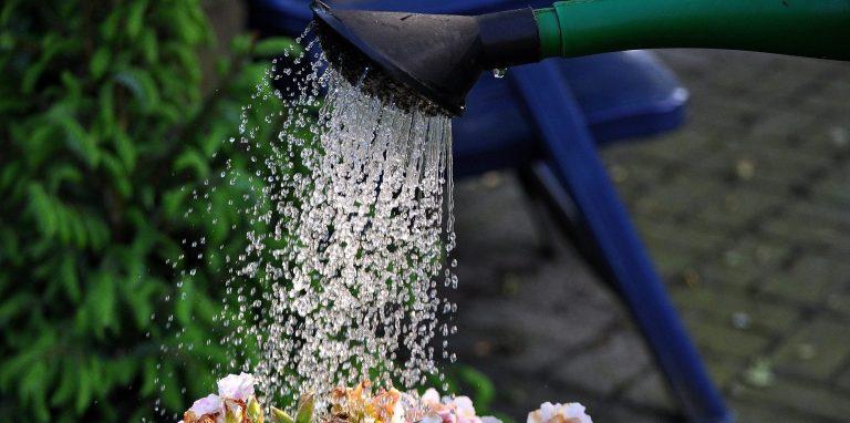 Optimale Besproeiing: Hoeveel Water Heeft Mijn Tuin Nodig?