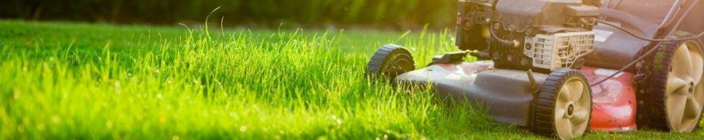 Koopadvies: Tips Voor Het Kopen Van Een Grasmaaier